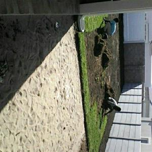 farm fresh instant lawn and garden needs