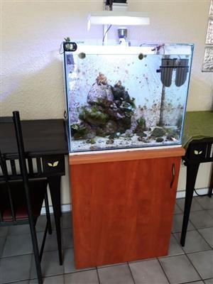Marine Reef Tank - Running