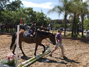 Horse riding & Livery Kyalami Midrand