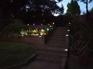 New garden Solar Lights