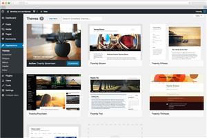 Website Development Special