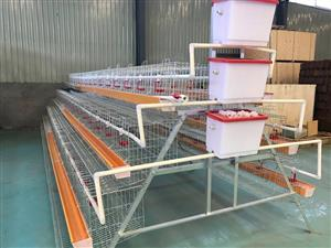 Chicken Cages For Sale