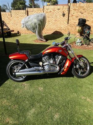 2013 Harley Davidson V Rod Junk Mail