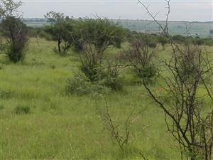 9.3201 Ha Plot met groot ouhuis gelee te Grootvlei, Pretoria
