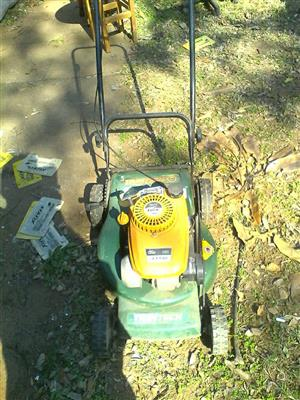 Trimtech lawnmoer for sale