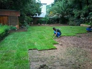 TOP QUALITY INSTANT LAWN,TOP MSOIL,COMPOST & LAWN DRESSING @ BEST PRICES.