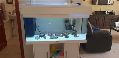 200l juwel tank