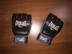 Everlast Boxing Kit